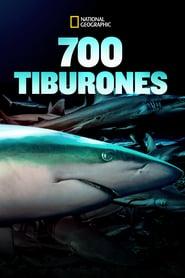 700 Tiburones