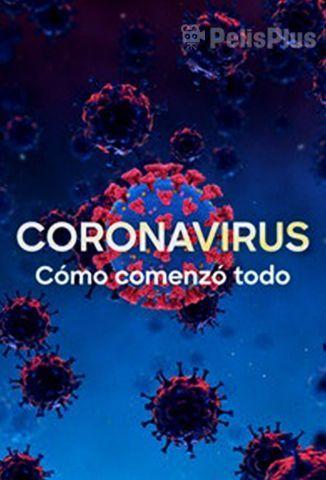 Coronavirus, Cómo Comenzó Todo