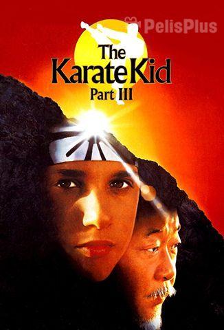 Ver Karate Kid Iii 1989 Online Cuevana 3 Peliculas Online