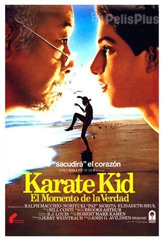 Ver Karate Kid 1984 Online Cuevana 3 Peliculas Online