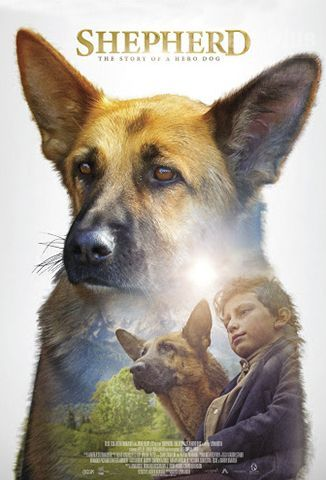 SHEPHERD: The Story Of a Hero Dog